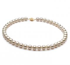 Blanc 8-9mm AAA-qualité perles d'eau douce Rempli D'or-Collier de perles