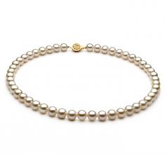 Blanc 7-8mm AAAA-qualité perles d'eau douce Rempli D'or-Collier de perles