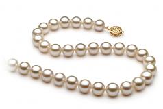 Blanc 8-8.5mm AAAA-qualité perles d'eau douce Rempli D'or-Collier de perles