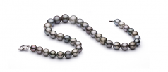 Multicolore 11-14.6mm AAA-qualité de Tahiti 585/1000 Or Blanc-Collier de perles