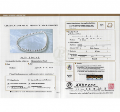 Blanc 6-9mm Hanadama - AAAA-qualité Akoya du Japon 585/1000 Or Jaune-Collier de perles