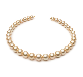 18 pouces Or 9.3-13.3mm AA-qualité des Mers du Sud 585/1000 Or Jaune-Collier de perles