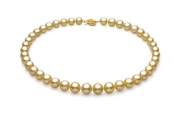Or 9.04-11.83mm AAA-qualité des Mers du Sud 585/1000 Or Jaune-Collier de perles