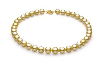 Or 10.89-12.75mm AAA-qualité des Mers du Sud 585/1000 Or Jaune-Collier de perles